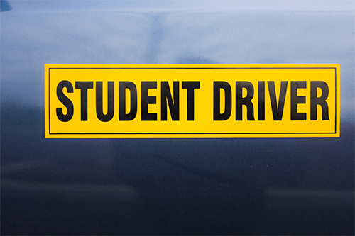 Magnetic Signs For Cars student driver print moz