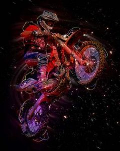 gorgeous biker design