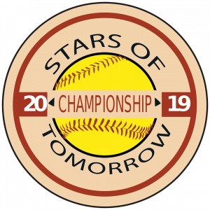 baseball championship sticker