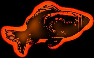 goldfish graphic design
